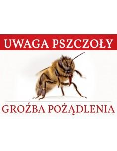 Kapelusz pszczelarski - ściągana siatka (siatka z tyłu) - wzór 602500
