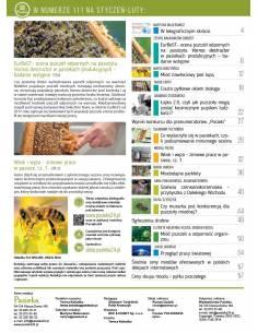Paczka etykiet z plastrem na miód nektarowo-spadziowy (100szt) - wzór E1331