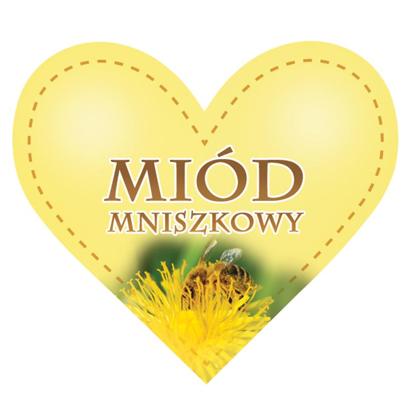 EM20_45x25mm_malinowy (1).jpg